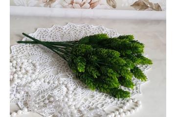 Куст зеленая шишка