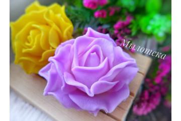 Роза 61
