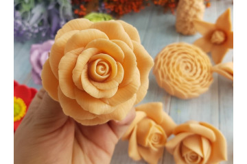 Роза телесная
