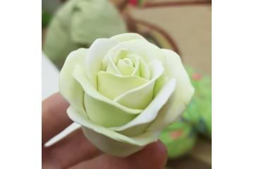 Роза свежая
