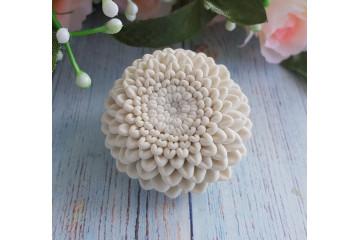 Хризантема малая