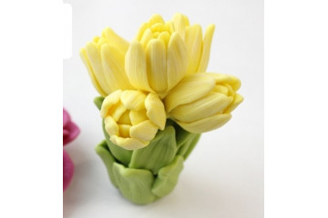 Букет тюльпанов 5шт без ноги