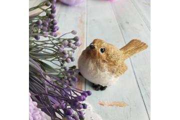 Птичка большая