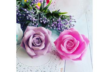 Роза Александра