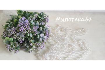 Куст карисса фиолетовый