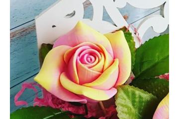 Роза нежная средняя