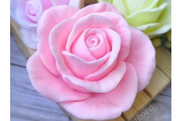 Роза темно-розовая