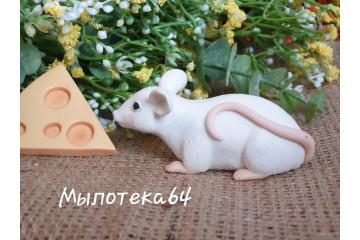 Крыса лежачая