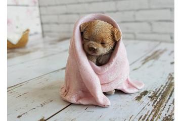 Кутек в одеялке